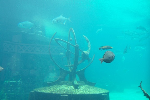 Atlantis The Dig